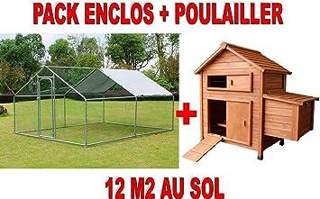 Un Lot Enclos Pour Poules Parc Pour Poules 12 M2 Maison Des