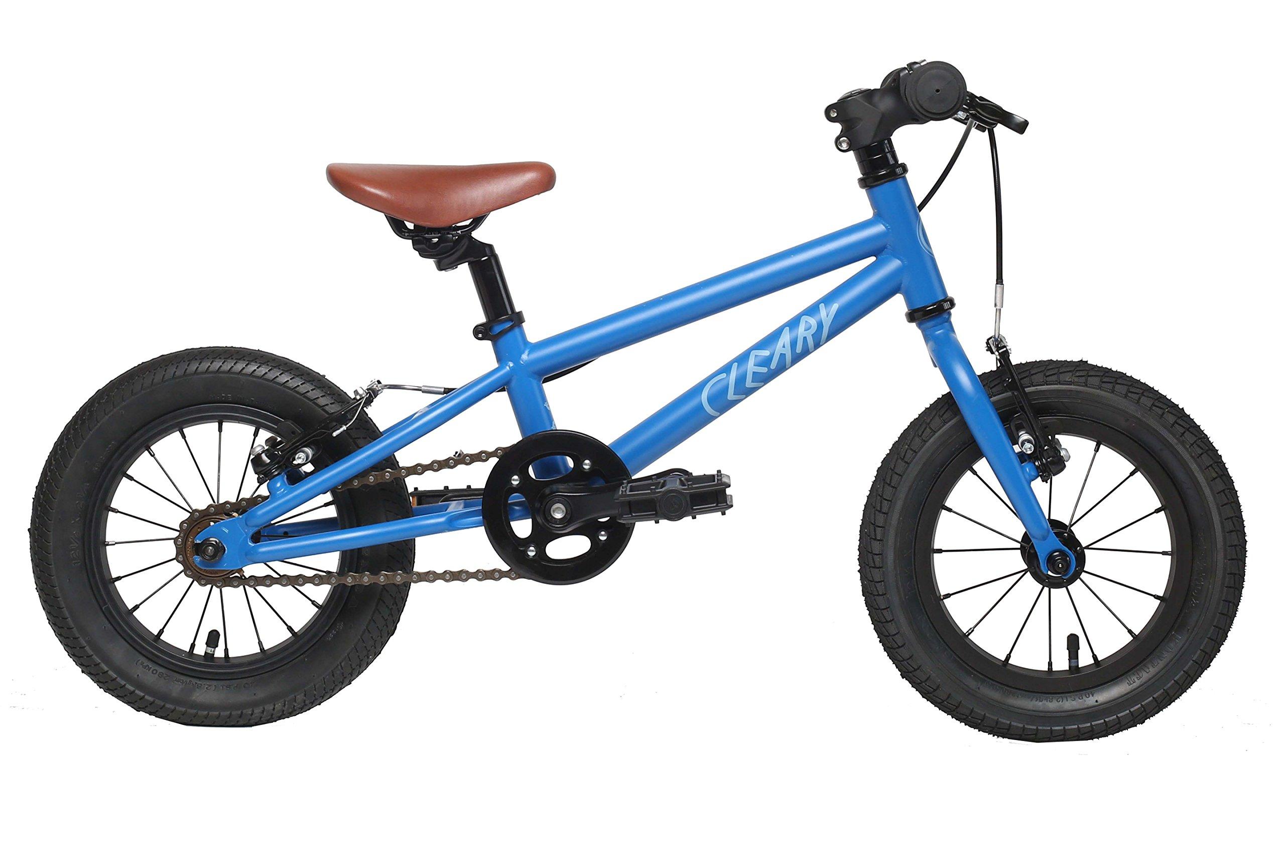 Cleary Gecko Lightweight 12'' Single Speed Bikes for Kids, Multiple Colors (Deep Blue- Freewheel)