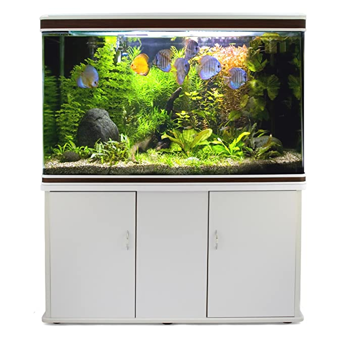 MonsterShop Tanque de Peces y gabinete de Acuario - Blanco: Amazon.es: Productos para mascotas