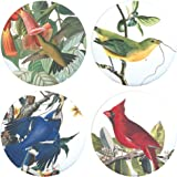 """Buttonsmith John James Audubon Birds of America 1.25"""" Refrigerator Magnet Set includes Hummingbird, Cardinal, Blue Jay, and Painted Finch - Made in the USA"""