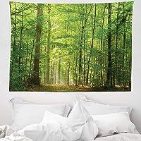 Orange Venue Ağaçlar Mikrofiber Geniş Duvar Halısı, Orman ve Güneş Işığı, Yumuşak Kumaş Çok Amaçlı Salon Yatak Odası…