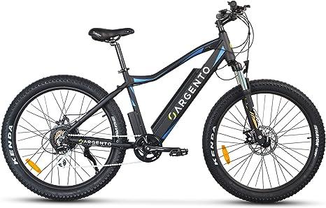 Argento Performance, Bicicletta Elettrica, Mountain Bike a pedalata assistita, Assicurazione AXA