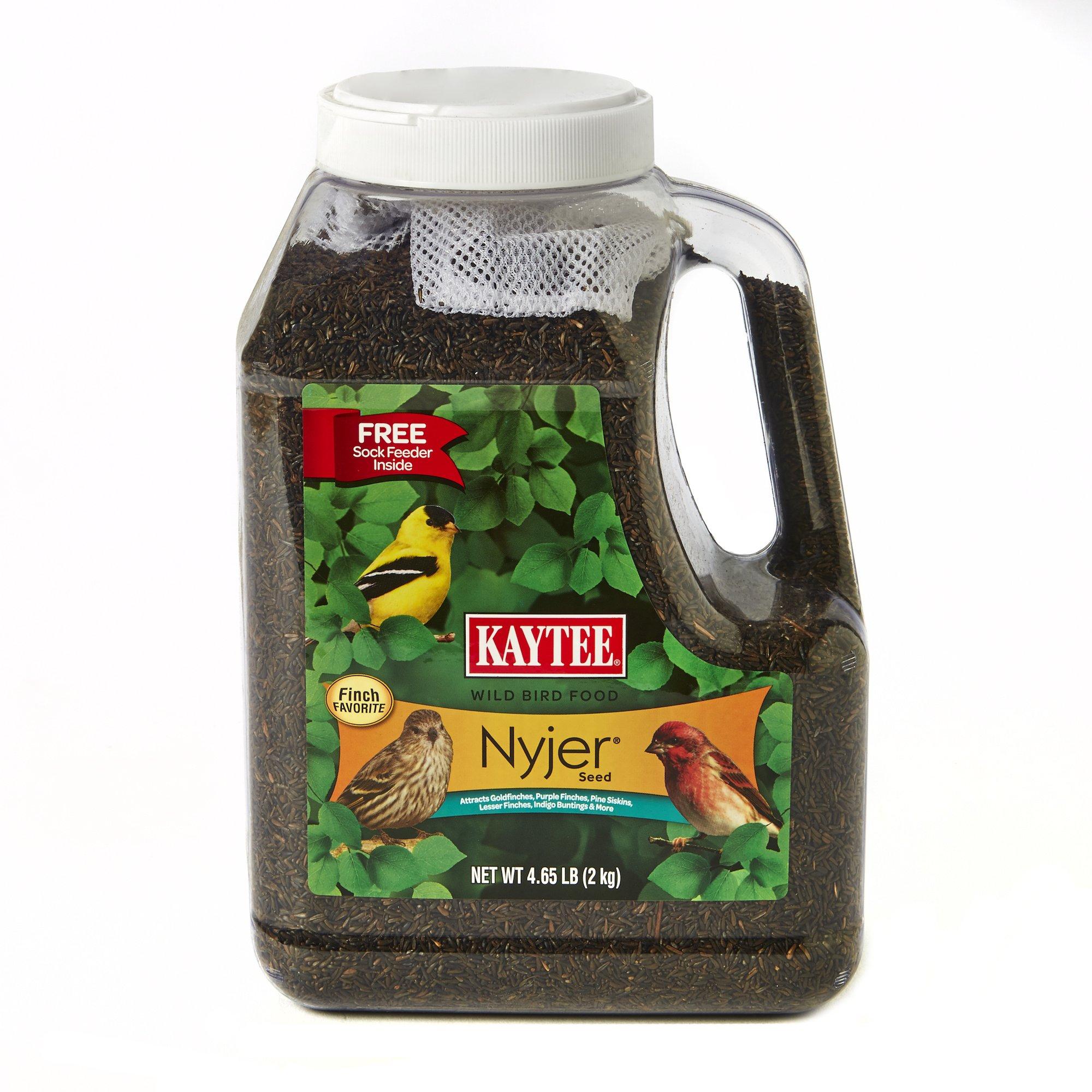 Kaytee Nyjer Bird Seed Jug with Sock, 4.65-Pound