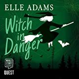 Witch in Danger: Blair Wilkes Mysteries, Book 3