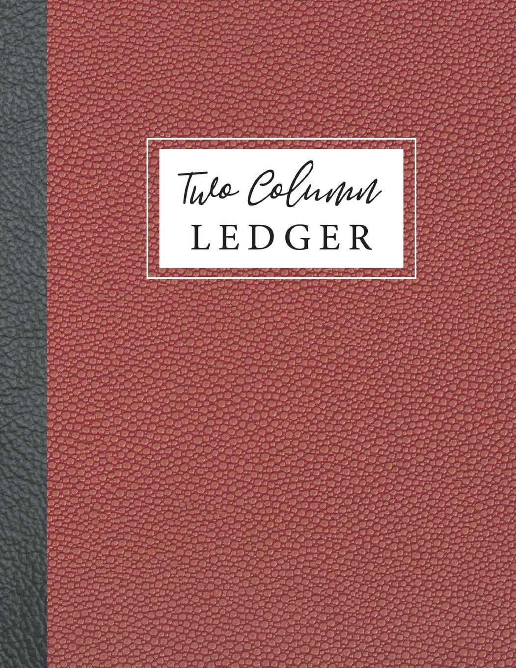 Two Column Ledger: Accounting Journal Entry Book, 2 Column Accounting Ledger, Expenses Debits, Bookkeeping Ledger Record Book, Ledger Notebook, ... Business Finance Accounting) (Volume 4) pdf epub