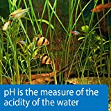 API pH TEST STRIPS Freshwater and Saltwater