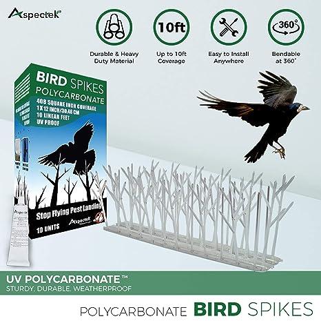 Aspectek Sistema Anti pájaros - 10 hileras de Púas antipalomas con base de Policarbonato para control de aves y Palomas (con Transparent Silicone ...