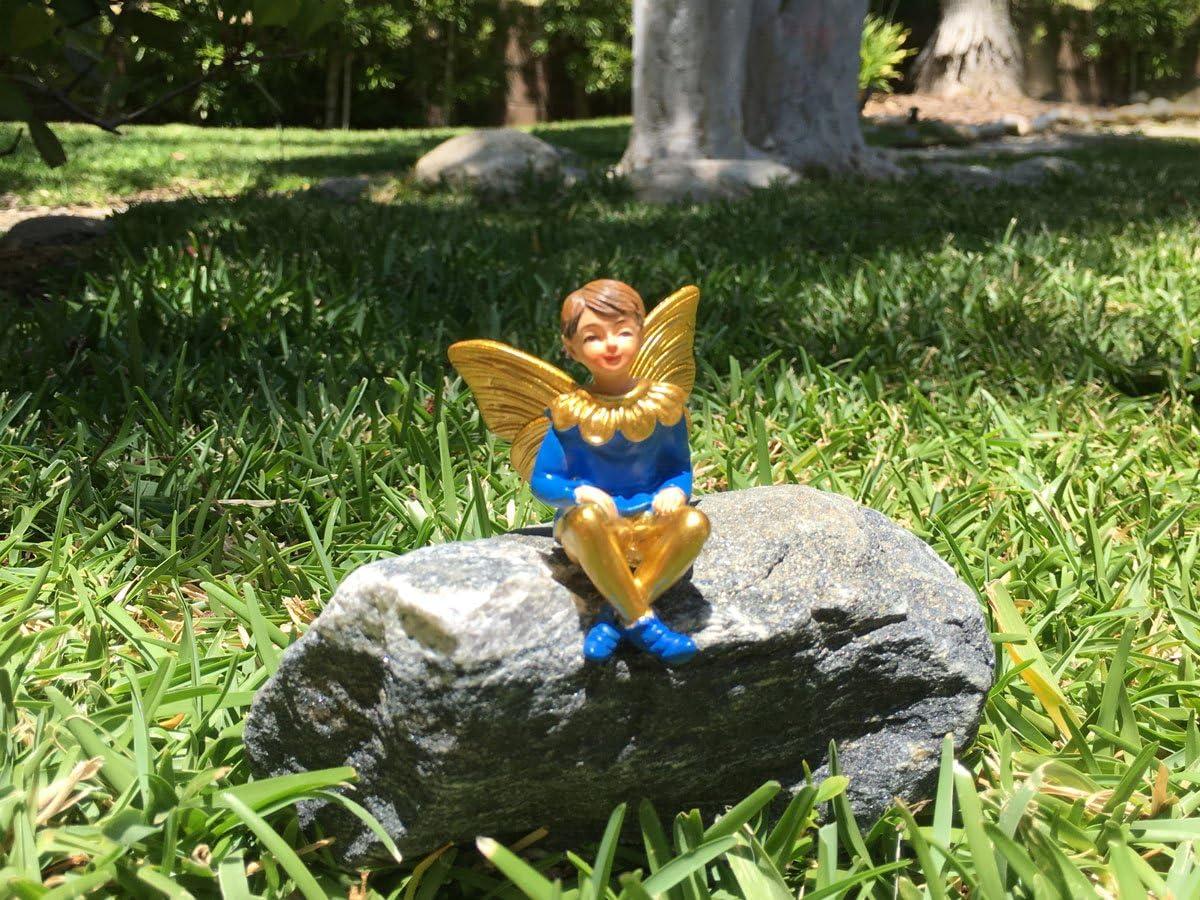 GlitZGlam Chico Hada – Dulce Joshua – Hada Chico en Miniatura para Jardines de Hadas/Jardines en Miniatura: Amazon.es: Jardín