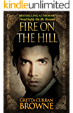 FIRE ON THE HILL  : A STAND-ALONE NOVEL: Book 2 in The Liberty Trilogy