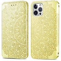 """Hoesje voor iPhone 12 / iPhone 12 Pro 6.1"""" Flip Cover Notebook Portemonnee Telefoonhoesje met Magnetische Sluiting Stand…"""