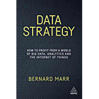 Data Strategy: How to Profit from a World of Big Data, Analytics and the Internet of Things (English Edition)
