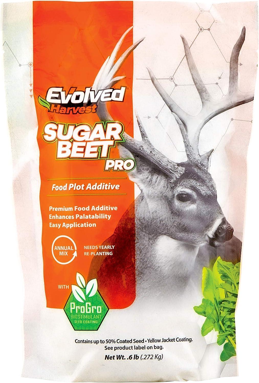 Evolved Harvest Sugar Beet Pro Plot Mixer 1 Lb Bag | Sugar Beet Food Plot Additive for Extra Nutrition