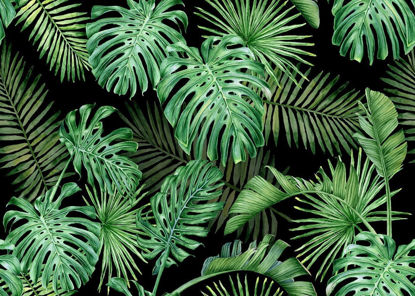 Wofawofa Bl100 Hintergrund Dschungelwald 2 1 X 1 5 M Kamera