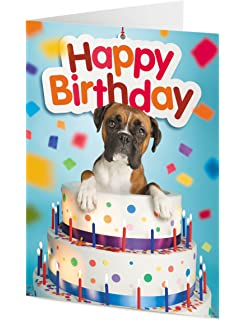 Boxer Dog Emerges From Giant Birthday Cake Card