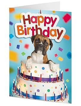 carte anniversaire avec chien boxer