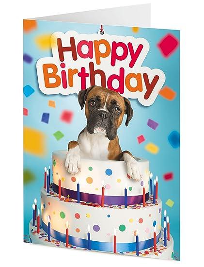 Tarjeta de felicitación de cumpleaños, diseño de perro bóxer ...