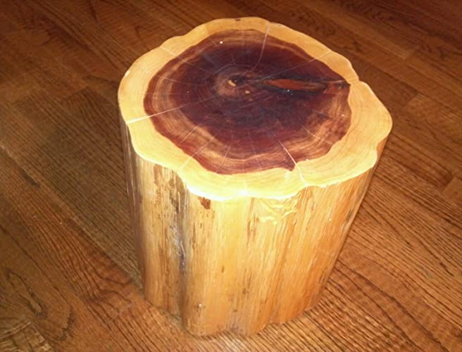 red cedar tree stump table stool photo prop plant stand diameter