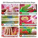 5D DIY Color Butterfly Diamond Painting Resin