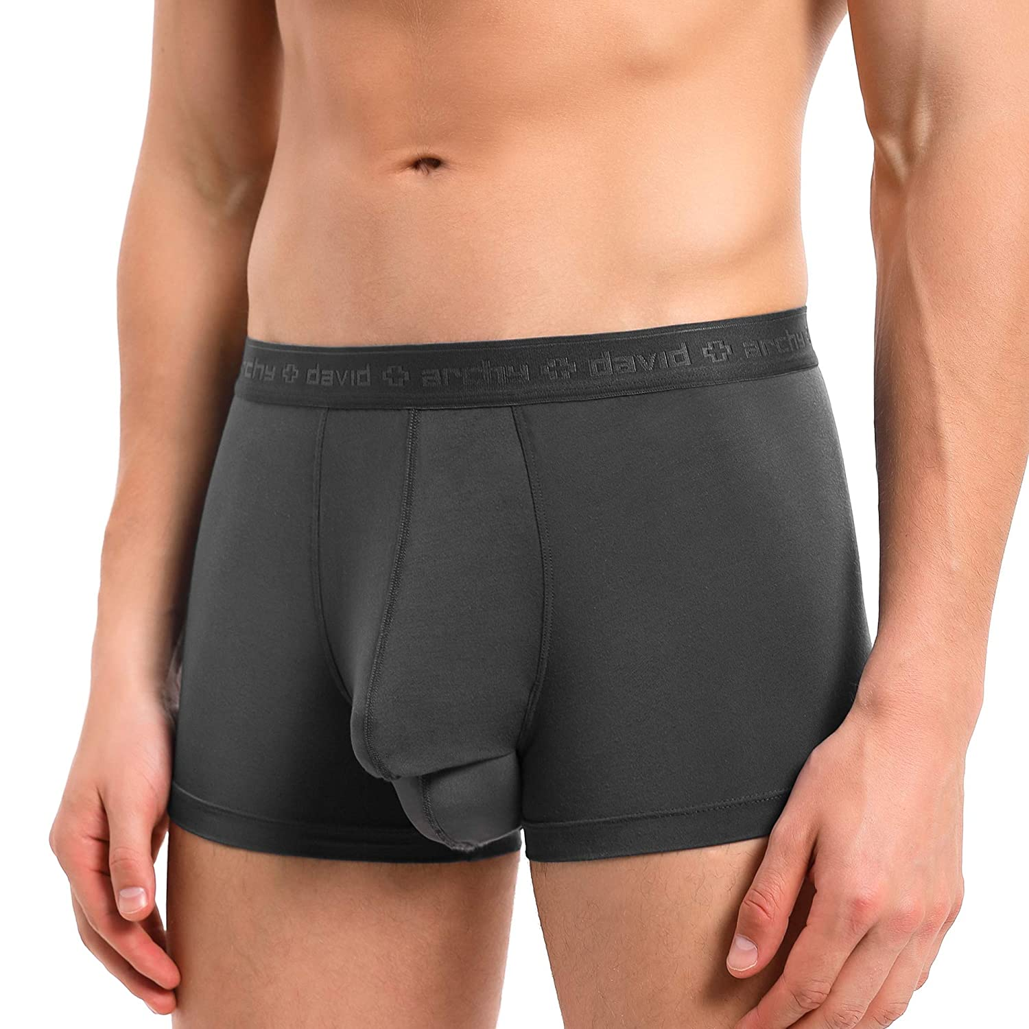 David Archy Men 4 Pack Underwear Micro Modal Separate Pouches Trunks with Fly