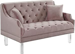 Meridian Furniture Roxy Collection Modern | Contemporary Velvet Upholstered Loveseat Sofa with Luxurious Deep Tufting, Nailhead Trim and Acrylic Legs, Pink