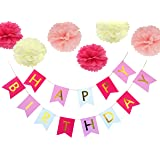 Happy Birthday Bunting Banner With Tissue Paper Pom Poms Flower for Birthday Party Decoration (Multicolor 1)