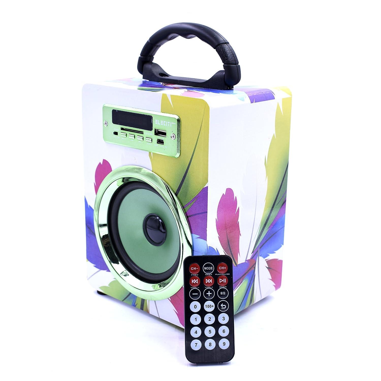 Mini Altavoz Bluetooth Portátil Inalámbrico con Radio, Lector USB y SD, 5W Batería Recargable (Modelo 4)