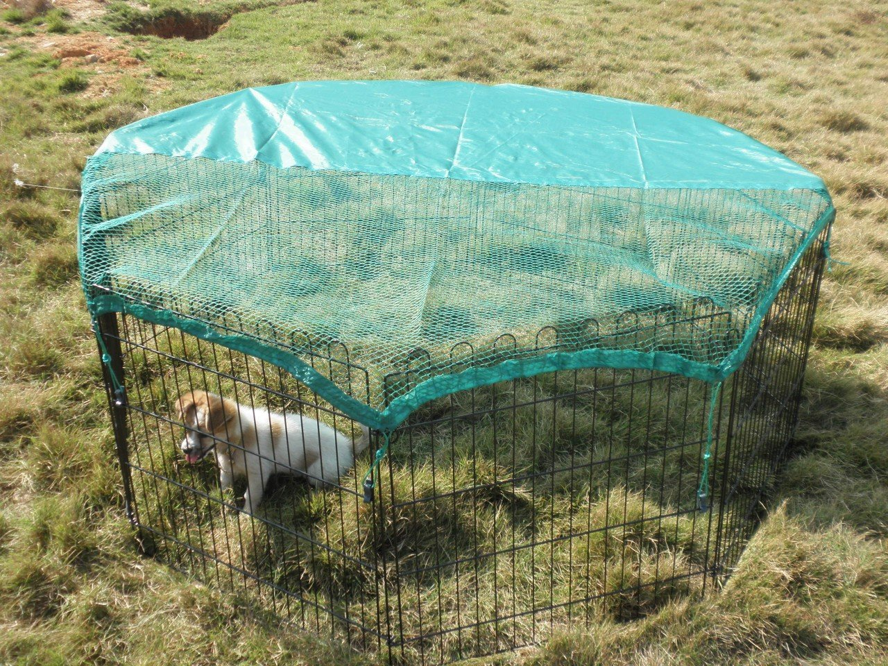 VivaPet Outdoor Octagon Rabbit Run Cage Pen with Sun Protection Net ...