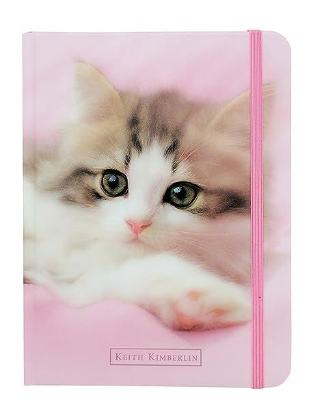 Amazon.com: Lindo Animales Peludos – Cachorros o Gatitos ...