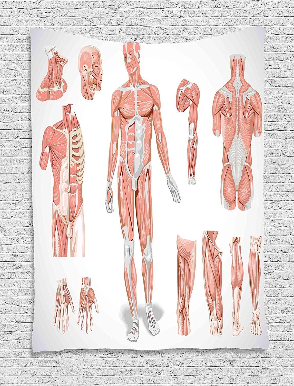 Superweicher Fleece Überwurf Decke menschlichen Anatomie Inner ...
