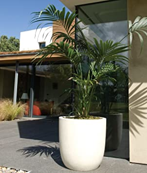 Modern White Garden Planters.Fibreglass U0026 Poly Resin Bullet Planters Large