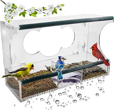 screen fastened creatures bird feeders