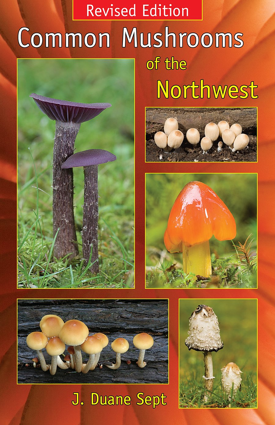 Common Mushrooms of the Northwest: Alaska, Western Canada & the Northwestern United States ebook