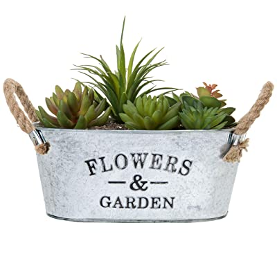 MyGift Rustic 'Flowers & Garden' Bucket Design Small Metal Succulent Plant Container w/Twine Handles : Garden & Outdoor