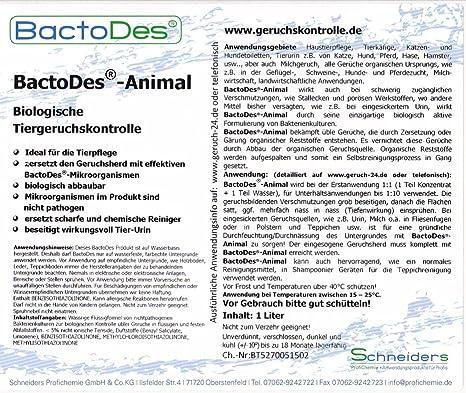 BactoDes - Eliminador de olores (concentrado para diluir, incluye botella de mezcla, elimina olores de orina de animales): Amazon.es: Productos para ...