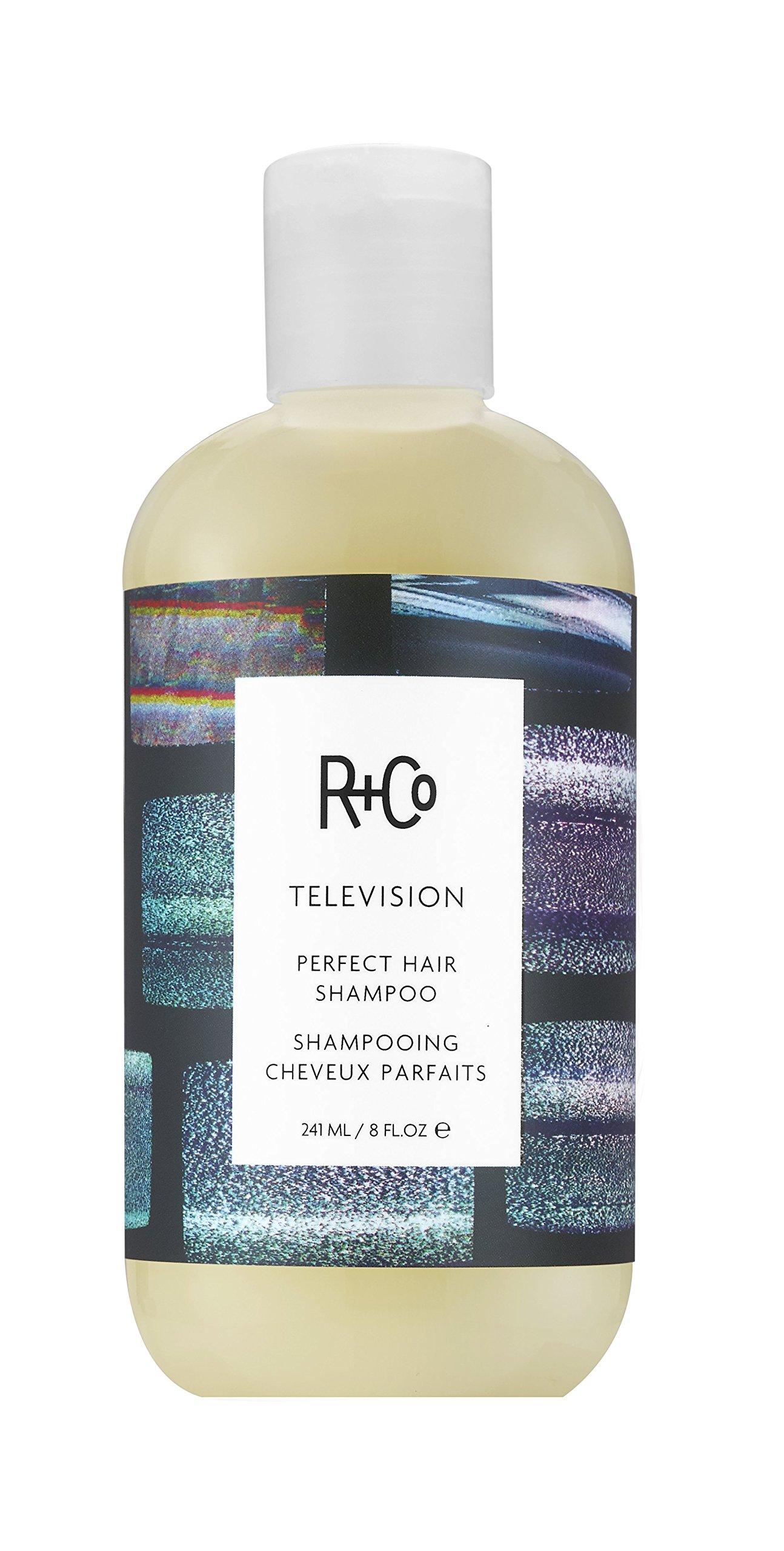 R+Co Television Perfect Hair Shampoo, 8 Fl Oz by R+Co