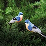 "Feather/Foam Bluebird CLip Ornament A/2 4.5-5""-2PK"