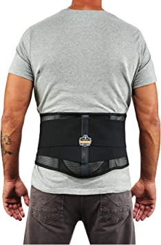 Ergodyne ProFlex 1051 Mesh Back Support Large Black