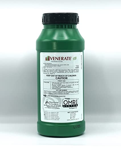 Amazon com : Venerate CG Bioinsecticide Insecticide for Mites