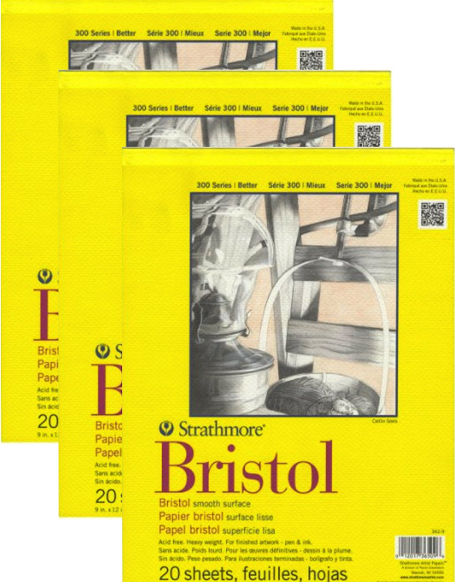 Strathmore 300 Bristol Board - 3 Pack Bundle - Smooth Paper Pad - 9 x 12 by Anahs Market