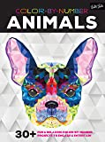 Color by Number: Animals: 30 Fun & Relaxing Color-by-Number Projects to Engage & Entertain