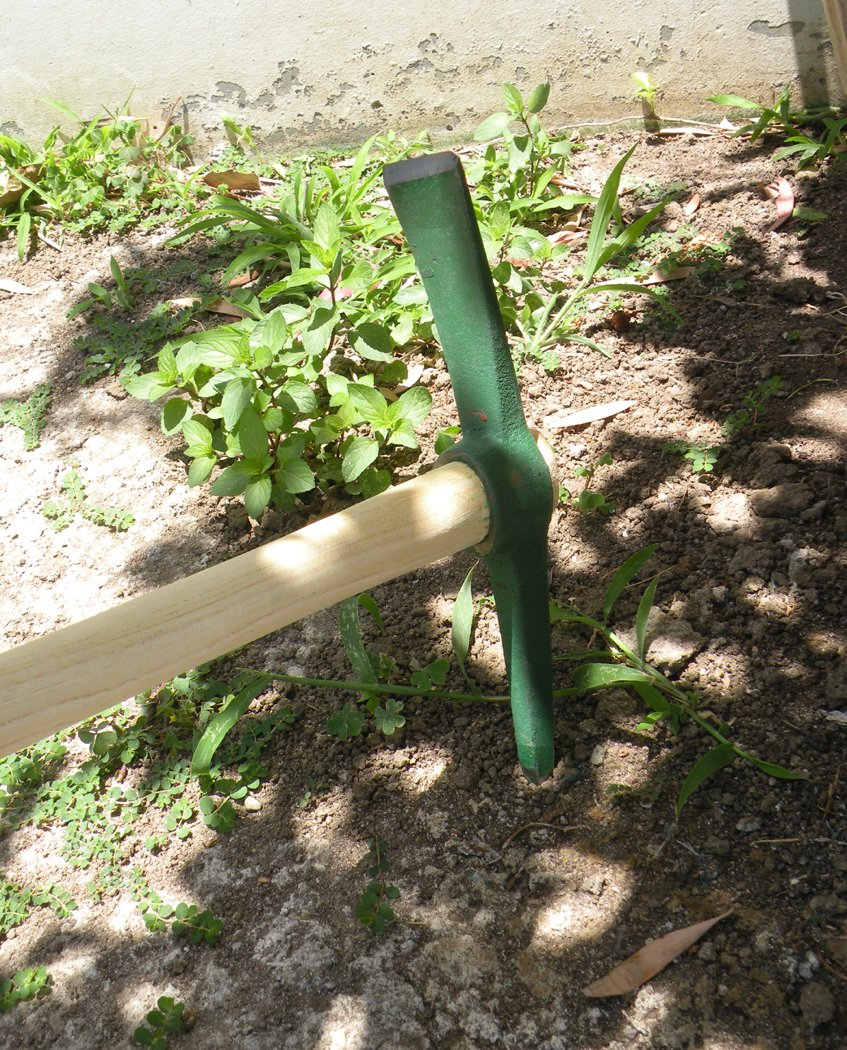 Small Hand-Held Portable Garden Pick Mattock , Professional Pick Mattock Classic Digging Tool,Great for Cultivating and Weeding-Pickaxe with Wooden Handle ! All Forged #65 Extra Thickness Heavy Duty Steel Construction ! by Eastern Cloud (Image #2)