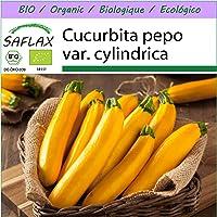 SAFLAX - Ecológico - Calabacín - Fiebre del