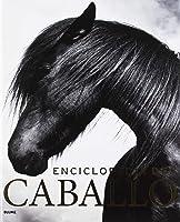 Enciclopedia Del