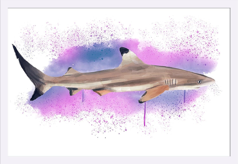 Blacktip Reef Shark Watercolor 36x24 Giclee Art Print Gallery Framed White Wood Wall Art Amazon Com