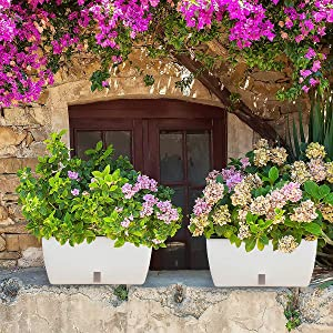 DDS-DUDES 18.3 Inch Large White Rectangular Self Watering Planter,Windowsill Planter Box for All House Plants Flowers and Herbs, Outdoor Large Flower Pots Vegetable Pots(2 Sets)