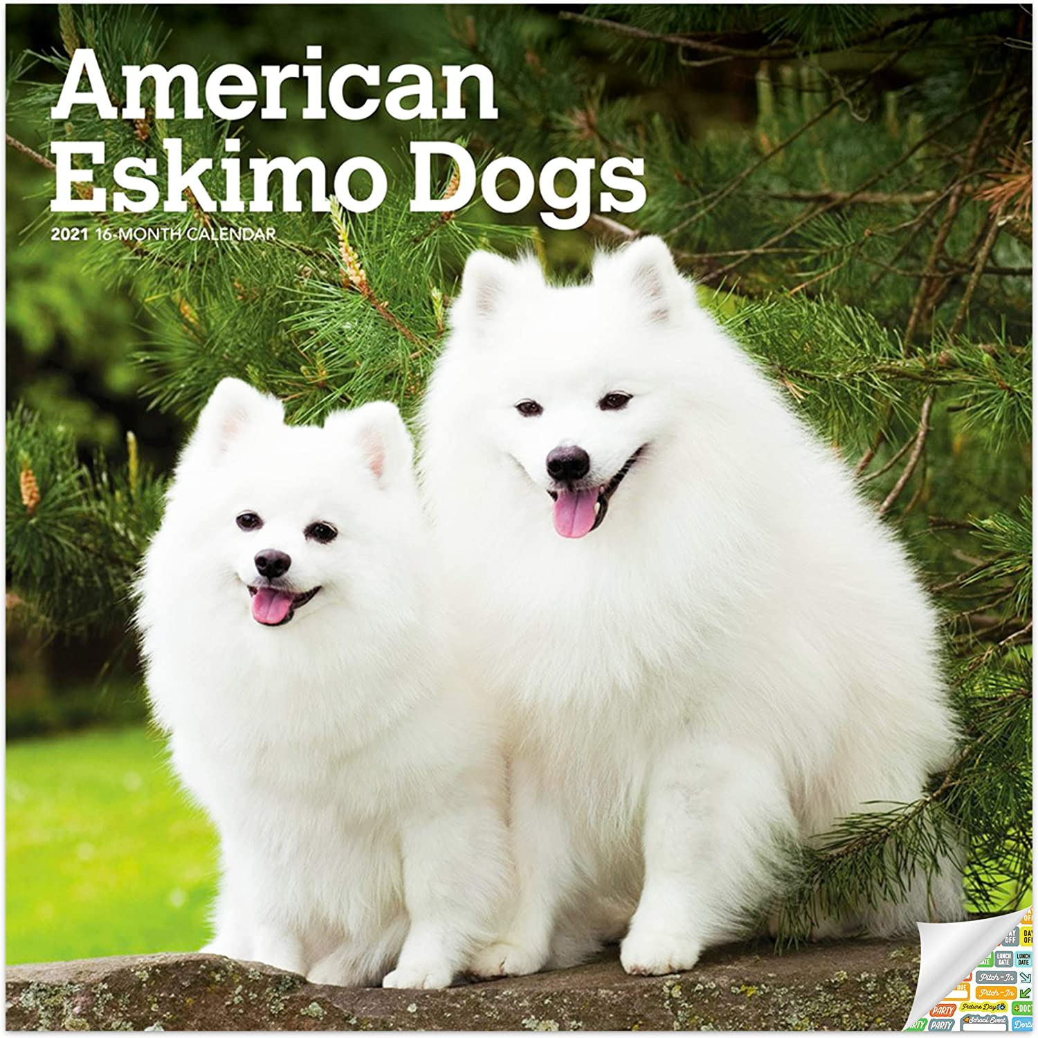 American Eskimo Dogs Calendar 2021 Bundle - Deluxe 2021 Eskies Wall Calendar with Over 100 Calendar Stickers (Dog Lover Gifts, Office Supplies)