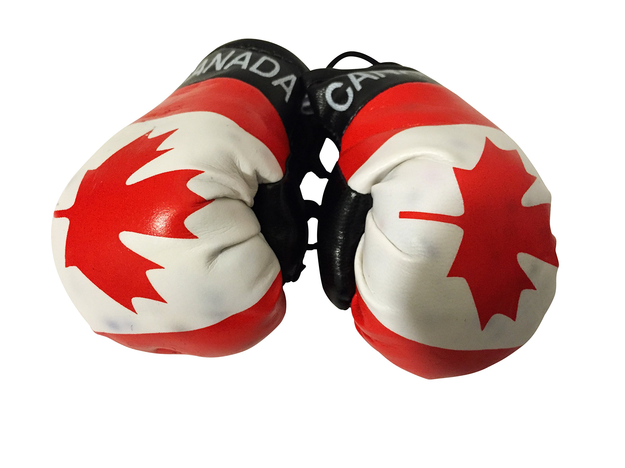 Flag Mini Small Boxing Gloves to Hang Over Car Automobile Mirror – Americas (Country: Canada)