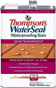 Thompsons Waterseal Th.042851-16 Waterproofing Stain