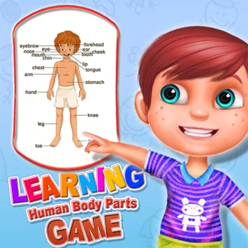 Amazon.com: Learning Human Body Parts Game - Fun way to learn the ...
