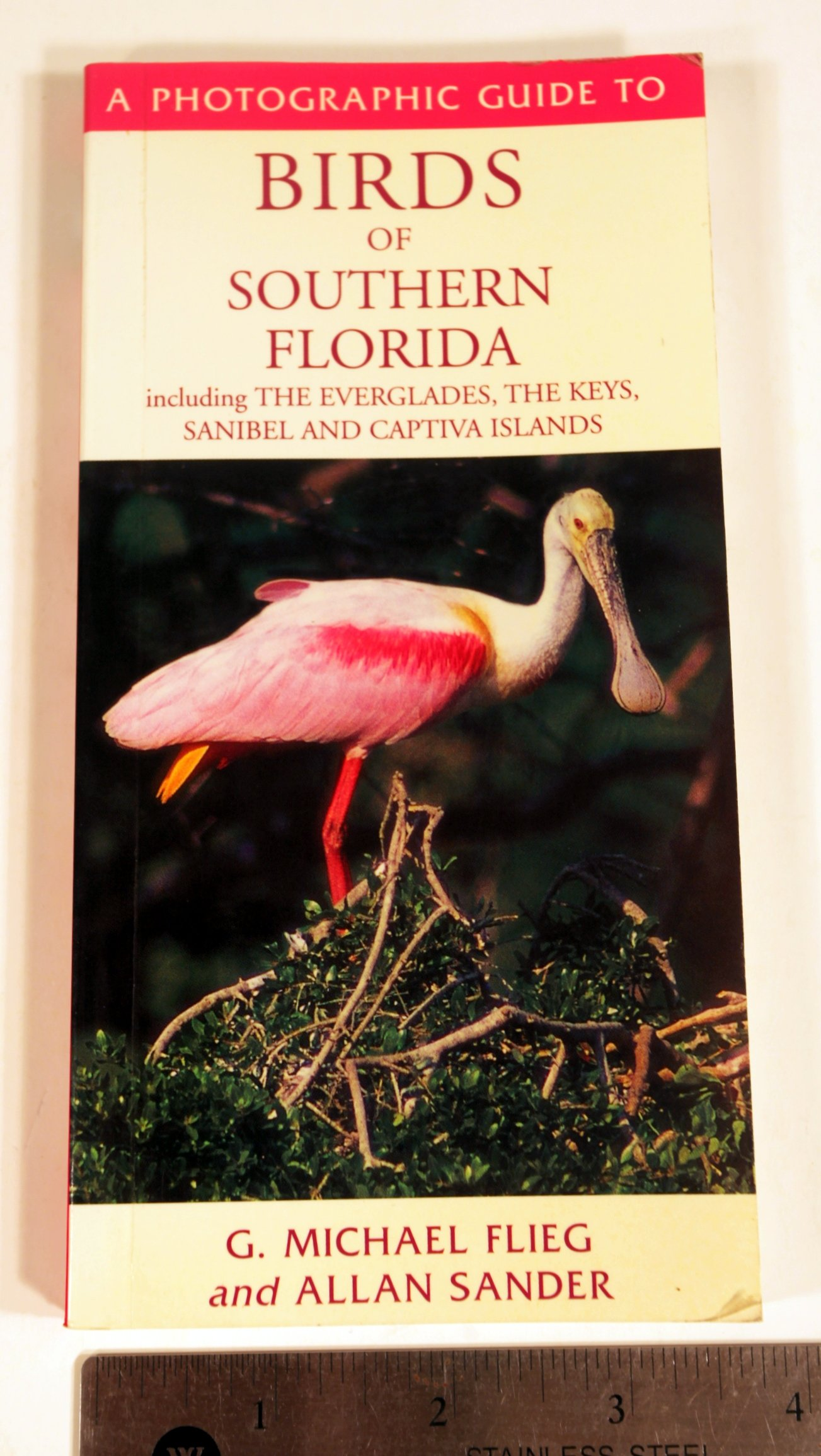 A Photographic Guide to Birds of Southern Florida: Including the Everglades, the Keys, Sanibel and Captiva Islands pdf epub